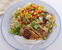 Chicken with Rice and Vegetables Royalty Free Stock Photo