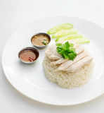 Chicken rice. On white background Royalty Free Stock Photography