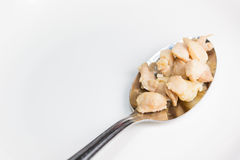 Chicken ripe in the spoon. Chicken ripe in the spoon/ isolated on white Stock Photo
