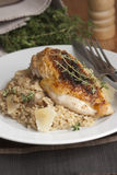 Chicken with risotto Royalty Free Stock Photos