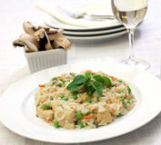 Chicken Risotto Stock Photography