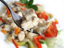 Chicken risotto on a fork Royalty Free Stock Photo