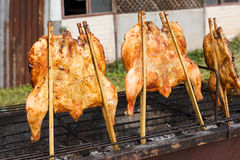 Chicken roast on grill. Royalty Free Stock Image