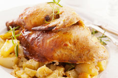 Chicken roasted. With potato and herbs stock image