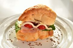 Chicken roll. A chicken rol with salads and sauce Royalty Free Stock Photos