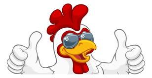 Free Chicken Rooster Cockerel Bird Sunglasses Cartoon Stock Photos - 146444543