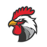Chicken rooster head mascot Stock Image