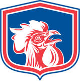 Chicken Rooster Head Mascot Shield Retro Stock Images
