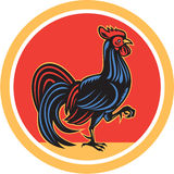 Chicken Rooster Marching Walking Circle Retro Royalty Free Stock Photos
