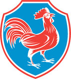 Chicken Rooster Side Shield Woodcut Royalty Free Stock Image
