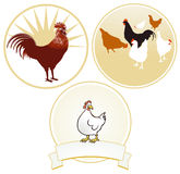 Chicken and rooster sign Royalty Free Stock Images