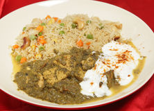 Chicken saag meal with veg pulao Stock Images