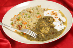 Chicken saag with vegetable rice Royalty Free Stock Image