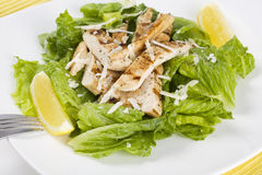 Chicken salad. Studio shot of chicken salad with garnishments on a white plate with fork Stock Photography