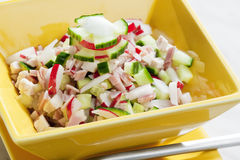 Chicken salad. With radishes and cucumber Royalty Free Stock Image
