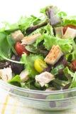 Chicken Salad stock photography