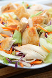 Chicken salad. Fresh and ready exquisite chicken salad on bowl Royalty Free Stock Photo