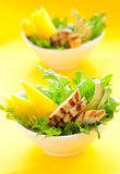 Chicken  salad Royalty Free Stock Photo