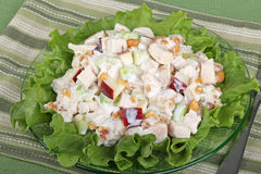 Chicken Salad. With lettuce on a plate Stock Photos