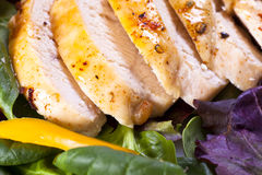 Chicken salad. Detail on a fresh salad with sliced grilled chicken breast-detail Royalty Free Stock Photos