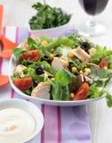 Chicken salad Royalty Free Stock Photos
