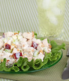 Chicken Salad. With apple pieces on top of lettuce Royalty Free Stock Photo