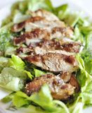 Chicken salad. On a white plate Royalty Free Stock Photography