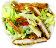 Chicken salad. Caesar salad chicken meat  bacon cheese vegetable Royalty Free Stock Image