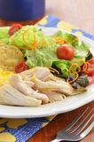 Chicken with salad Royalty Free Stock Photo