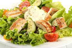Free Chicken Salad Royalty Free Stock Photography - 40313647