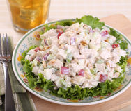 Chicken Salad Royalty Free Stock Photos