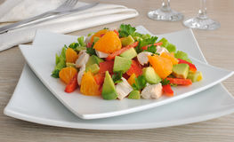 Chicken salad with avocado Royalty Free Stock Photography