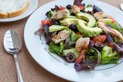 Chicken salad with avocado, mixed greens, cucumbers, tomatoes, and olives. Royalty Free Stock Photography