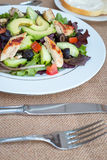 Chicken salad with avocado, mixed greens, cucumbers, tomatoes, and olives. Stock Photography