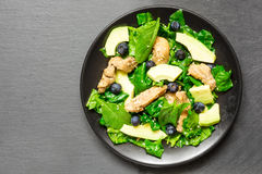 Chicken salad with avocado, spinach and blueberries in black plate on gray stone background Royalty Free Stock Photography
