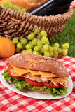Chicken salad baguette sandwich with picnic basket. Picnic basket chicken salad baguette sandwich Royalty Free Stock Photos