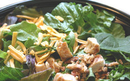 Chicken Salad Bowl. Close up of Chicken salad in a bowl royalty free stock photography