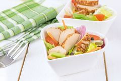 Chicken Salad in a Bowl Royalty Free Stock Images