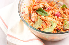 Chicken salad with carrots, spinach and radishes Royalty Free Stock Photos