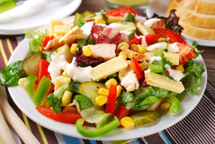 Chicken salad with cheese and vegetables. Grilled chicken salad with cheese,vegetables and garlic sauce Royalty Free Stock Photo