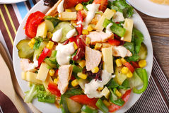 Chicken salad with cheese and vegetables. Grilled chicken salad with cheese,vegetables and garlic sauce Royalty Free Stock Photos