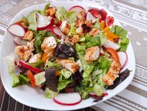 Healthy Chicken salad on plate royalty free stock images