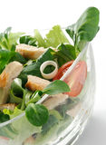 Chicken salad, close-up Royalty Free Stock Image