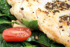 Chicken and salad close up Stock Image