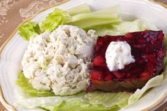 Chicken Salad and Cranberry Salad Royalty Free Stock Photos