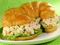 Chicken Salad on a Croissant. Chicken salad on a flaky butter croissant stock image