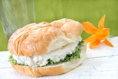 Chicken Salad Croissant stock photos