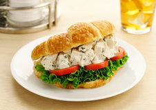 Chicken Salad Croissant Sandwich Royalty Free Stock Photography