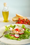 Chicken salad on dish Royalty Free Stock Images