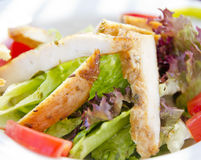 Chicken salad Royalty Free Stock Image
